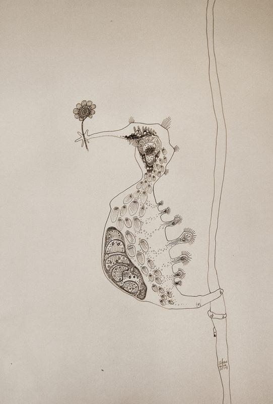 hippocamp zefau